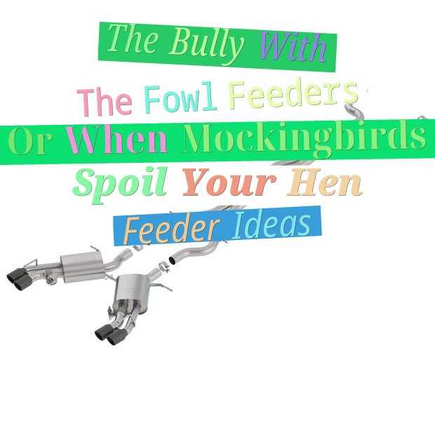 The Bully With The Fowl Feeders Or When Mockingbirds Spoil Your Hen Feeder Ideas